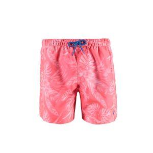 Tropical s Junior boys shorts
